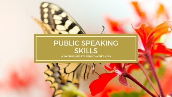 Public Speaking Skills Training