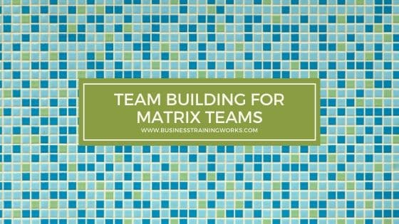 Team Building Training for Matrix Teams