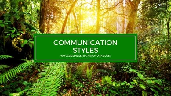 Communication Styles Training