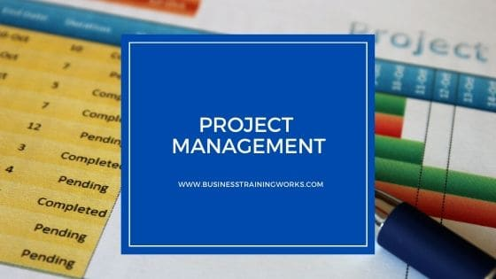 Online Project Management Course