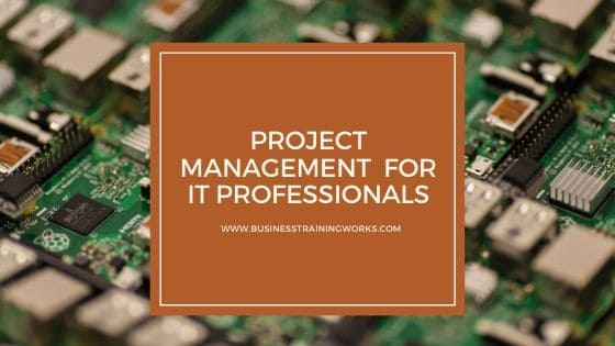 Online Project Management Course for IT Professionals