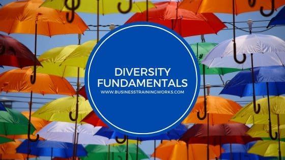 Workplace Diversity Webinar