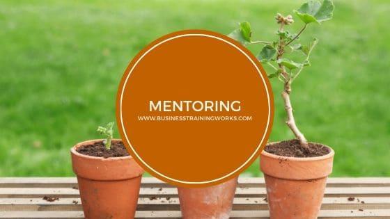 Mentoring Webinar